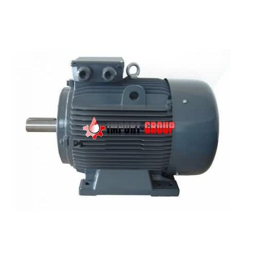 Двигатель W-D160/215-2/14K0, 380-415В, 50Гц